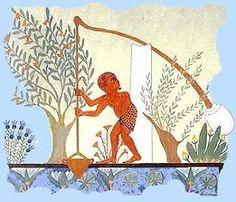 Risorse naturali e agricoltura dell'Antico Egitto