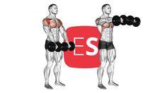 Εμπρόσθιες άρσεις για ώμους με αλτήρες Stay Fit, Weight Loss, Workouts, Keep Fit, Loosing Weight, Workout Exercises, Excercise, Exercise Workouts, Loose Weight