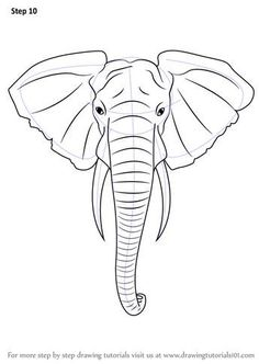 Learn How to Draw an Elephant Head (Zoo Animals) Step by Step . Drawing Tips elephant drawing Elephant Head Drawing, Elephant Sketch, Elephant Art, Draw An Elephant, Elephant Head Tattoo, Elephant Drawings, Elephant Doodle, Elephant Paintings, Elephant Watercolor