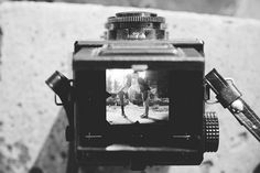 Vintage camera used for an engagement shoot - Claire Penn Photography