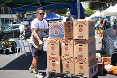 Volunteer opportunities around LA