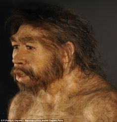 Ms Daynès uses human hair for members of the Homo genus, but mixes in yak hair for earlier hominds, as their hair is thought to have been much thicker and coarser. A model of one of the first specimens of Homo erectus, dubbed Peking Man is pictured, who lived between 700,000 and 200,000 years ago. Elisabeth Daynès.