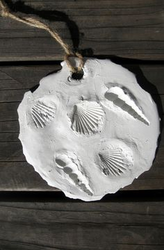 Make these homemade shell fossils and introduce your child to the wonders of science!