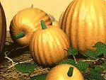 Calabazas de Acción de Gracias