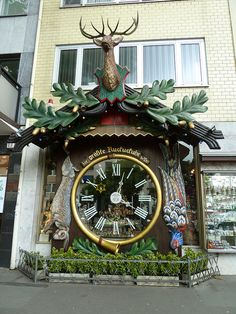 World's Largest Cuckoo Clock, Wiesbaden Germany- definitely not surprised this is in Germany, gotta love the family heritage :)