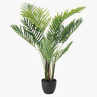 Schoenenrek Deur Jysk.21 Best Jysk Wishlist Images In 2018 Plant Leaves