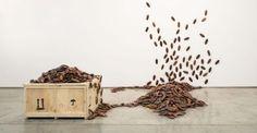 Bita Fayyazi, Cockroaches, 1998-99