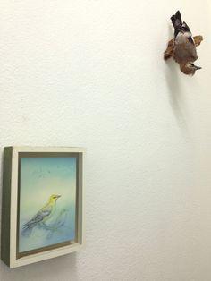 Gerda Ten Thije Wielewaal, pastel, potlood, kleurpotlood en stift op papier 21 x 15 cm en opgezette Vlaamse gaai. coderood.co 27 juni 2015