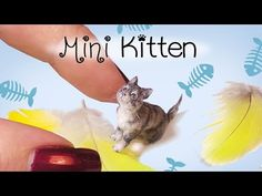 Miniature Cat Tutorial // Realistic Kitten Dollhouse DIY // SugarCharmShop - YouTube Diy Clay, Polymer Clay Projects, Polymer Clay Cat, Polymer Clay Animals, Polymer Clay Miniatures, Barbie Cat, Gato Gif, Clay Cats, Cat Doll