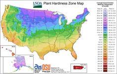 The Homestead Survival | October Homesteading Gardening To Do List | http://thehomesteadsurvival.com