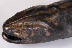 Image result for sam ludden eels