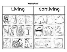 Alexander and the wind up mouse Living vs. Nonliving Sort (to use before introducing fall plants and pumpkin life cycle) Science Inquiry, Primary Science, Science Lessons, Teaching Science, Science For Kids, Science Activities, Life Science, Science Biology, Science And Nature