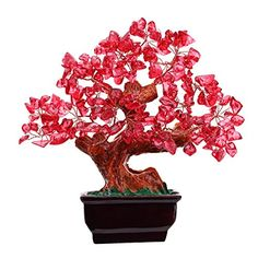 """nice  The sale is for a feng shui crytal gem money tree Made of resin and crytal stone,Leaves and branches can be arranged how you like It's about 7"""" tall ; width diameter is about 6.3""""   https://www.silkyflowerstore.com/product/feng-shui-red-crystal-money-tree-bonsai-style-decoration-for-wealth-and-luck/"""