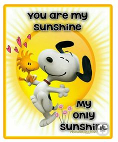 Snoopy and Woodstock with hearts and big yellow sun. Quote, you are my sunshine, my only sunshine! Peanuts Gang, Peanuts Cartoon, Charlie Brown And Snoopy, Peanuts Movie, Peanuts Characters, Snoopy Et Woodstock, Snoopy Song, Goodnight Snoopy, Monsieur Jean