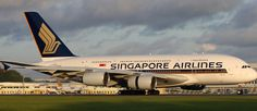 Singapore Airlines se encamina a competir - El Dia.com.do