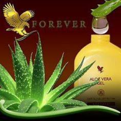 ALOE VERA for health and beauty - Forever Living: NATURAL CLEANSING & WEIGHT LOSS PROGRAM - FOREVER LIVING PRODUCTS Www.ourbodyforever.com