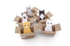 Kitty House-it