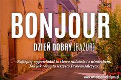 Portal Ambasadorek Le Petit Marseillais