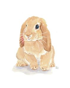 Lop Earred Rabbit by WaterInMyPaint Animal Paintings, Animal Drawings, Art Drawings, Bunny Drawing, Bunny Art, Rabbit Illustration, Illustration Art, Watercolor Animals, Watercolor Art