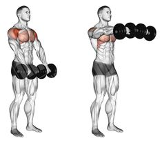 10 Best Muscle-Building Shoulder Exercises To Build Shoulders - Burn 500 Calories Traps Workout, Gym Workout Tips, Weight Training Workouts, Dumbbell Workout, Fitness Workouts, At Home Workouts, Deltoid Workout, Lifting Workouts, Fitness Goals