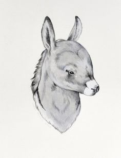 Sarah McNeil's little donkey drawing.