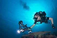 Diving In Thailand Scuba Diving Thailand, Underwater Photography, Water Photography, Underwater Photos
