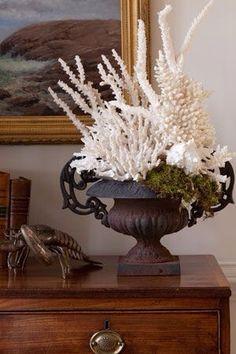Coral Arrangement