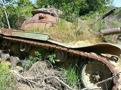 Tanks at Fort Knox, Kentucky - The dirt covering the tank has given way to weeds, a sort of natural camouflage.