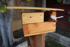 DIY Modern Birdhouse kids can build