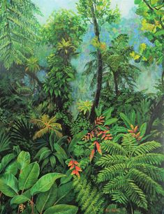 original painting, Dominican cloud forest, jungle painting, misty forest, magical forest - Healty fitness home cleaning Misty Forest, Magical Forest, Dark Forest, Forest Art, Jungle Art, Picture Wire, Forest Painting, Painting Inspiration, Landscape Paintings