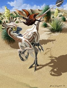 """""""A juvenile Atrociraptor marshalli is out hunting for an early morning snack - a bumbling rhinoceros beetle. I based the body of the dino on other small dromaeosaurs and a partial skull recovered from a canyon near Drumheller, Alberta, Canada."""""""