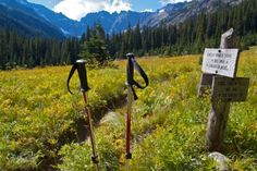 hiking poles buyers guide