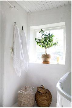【遊び心用スペース】観葉植物のあるバスルームの出窓   住宅デザイン