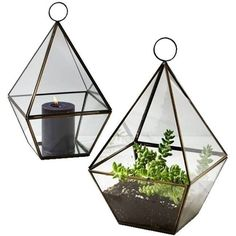 Serene Spaces Living Brass Triangle Lantern Clear By ($112) ❤ liked on Polyvore featuring home, home decor, candles & candleholders, fillers, decor, plants, flowers, candle holders, detail and embellishment