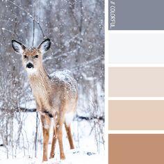 // COLORFUL. 0003 - PHOTOCREDIT:  UNSPLASH @teddykelley #kleur #kleurpaletten #kleurpallet #color #colorpalette #colorpalletes #colour #colourpalette #colourpalettes