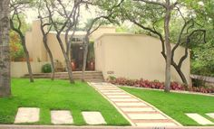 Modern Pathway and Landscape - GREENSCAPES LANDSCAPING, ATX