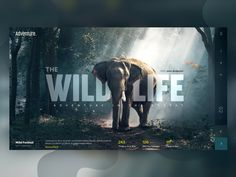 Wild Life - Landing Page - Best Picture For Web Design corporative For Your Taste You are looking for something, and it is going to tell you exactly what you are lo Layout Web, Website Design Layout, Layout Design, Layout Site, Website Designs, Website Ideas, Webdesign Inspiration, Web Inspiration, Graphic Design Inspiration
