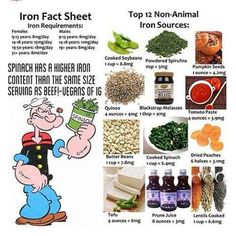 Non-animal iron food sources