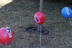 Staked balloons in the yard to shoot with Nerf guns!