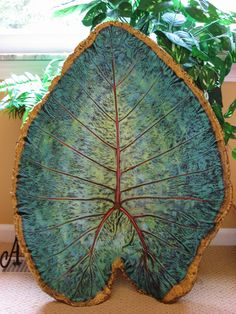 Giant concrete Elephant Ear Leaf casting   $115.50