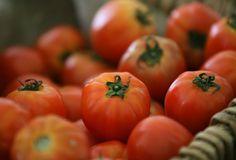 ¡Te revelamos cuáles son los tomates más nutritivos!: http://www.sal.pr/2013/02/25/los-tomates-organicos-son-mas-nutritivos/