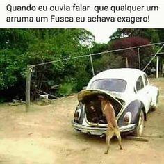 Gaucho, Stupid Funny Memes, Wtf Funny, Foto Fun, Caption Contest, Little Memes, Rio Grande Do Sul, Humor Grafico, Volkswagen