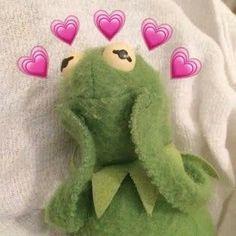Kermit The Frog Meme Aesthetic Frog Heart, Sapo Meme, Heart Meme, Cute Love Memes, In Love Meme, Cartoon Profile Pictures, Profile Pics, Mood Pics, Cartoon Memes