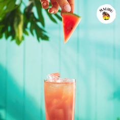 Rum Watermelon Splash Summer is here, which means it's time to make a splash with this pool party pleasing cocktail! One sip of this Malibu Watermelon Splash will add an instant refresh to any Summer heatwave Plus, you can impress every guest with this ph Cocktail Margarita, Cocktail Drinks, Malibu Cocktails, Vodka Cocktails, Cocktail Recipes, Malibu Rum, Liquor Drinks, Alcoholic Drinks, Summer Drinks