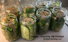 Fresh Packed CRISPY dill pickle recipe for canning. (low temp canning guide for pickles) Canning Tips, Home Canning, Canning Recipes, Easy Canning, Freezer Recipes, Crunchy Dill Pickle Recipe, Crispy Pickles Recipe, Garlic Dill Pickles, Smoothies