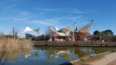Το Πάρκο Περιβαλλοντικής Ευαισθητοποίησης «Αντώνης Τρίτσης» είναι ο ιδανικός τόπος να επισκεφτεί κάποιος στην Αττική.