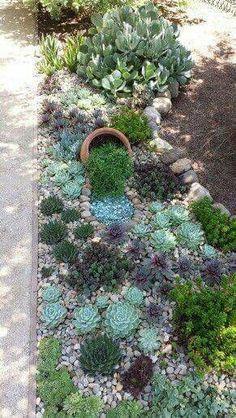 32 Stunning Low-Water Landscaping Ideas for Your Garden backyard landscaping landscaping garden landscaping Garden Inspiration, Plants, Backyard Garden, Succulents Garden, Rock Garden, Outdoor Gardens, Garden, Rock Garden Landscaping, Garden Projects