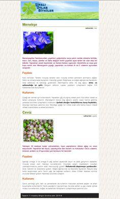 Css Dersleri – Web Sayfası Uygulama Örneği (Şifalı Bitkiler) | Bilişim Teknolojileri Alanı Öğrencileri Web Sitesi
