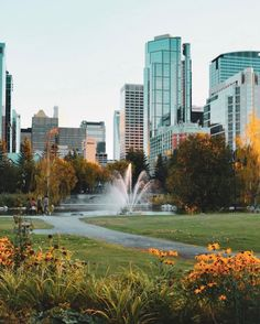Calgary, Canada, River, Outdoor, Outdoors, Outdoor Games, The Great Outdoors, Rivers