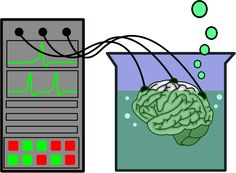 Image for brain in a vat clip art